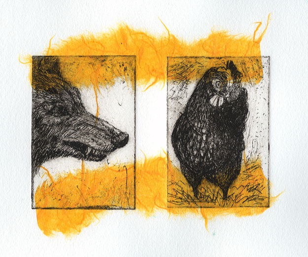 Coyote and chicken with yellow
