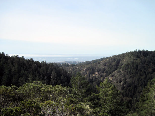 Looking out to Ano Nuevo