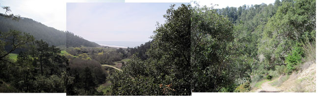 Panorama of farm and ocean