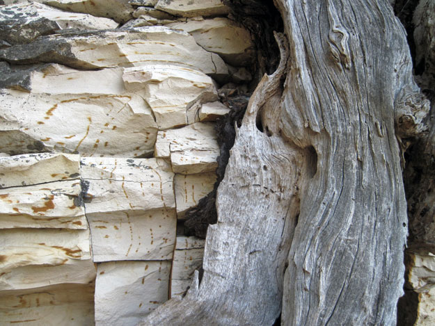 Textures of rock and wood