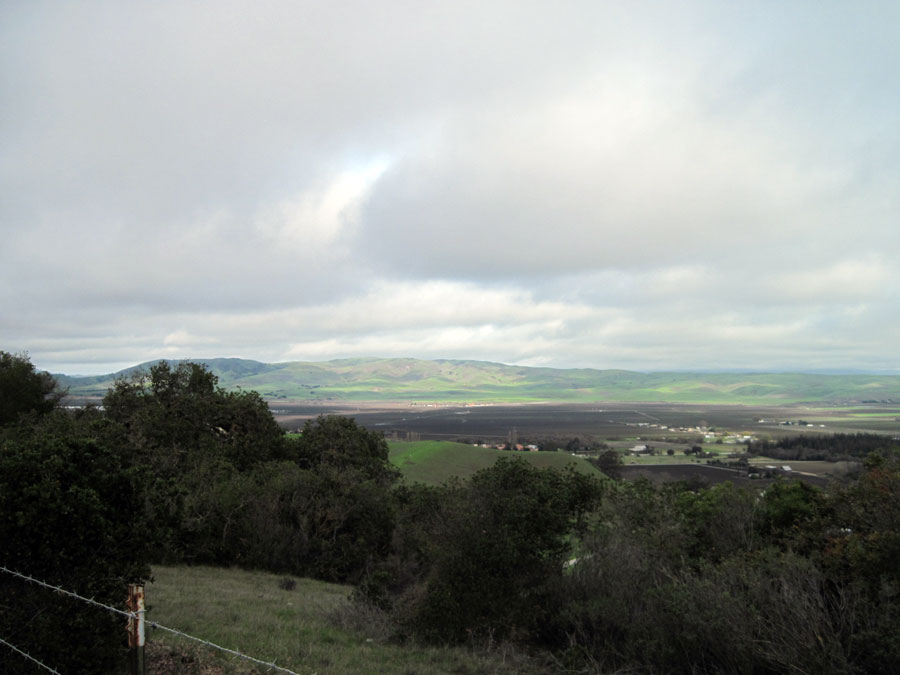 Looking out towards Hollister