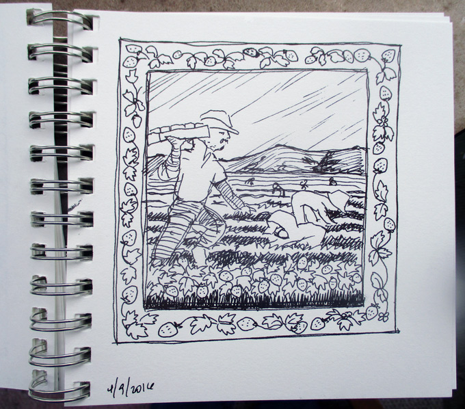 Drawing of farm laborers picking strawberries