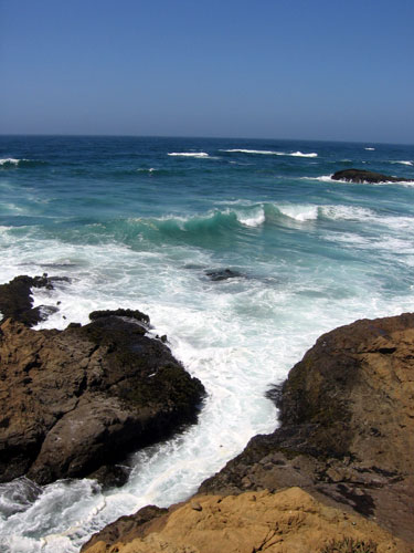 The rocky coastline at Fort Bragg